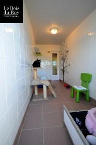 Chambre avec cour chats avec sa partie intérieure équipée de mobilier spécial chats
