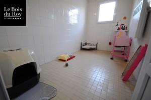 Chambre avec fenêtre avec un assortiment de notre mobilier spécial chats