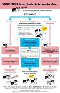 Image Doggie Drawings expliquant différents choix de comportement selon l'attitude de son chien