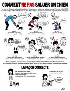 Image Doggie Drawings expliquant à autrui comment ne pas saluer son chien lorsqu'il est en laisse