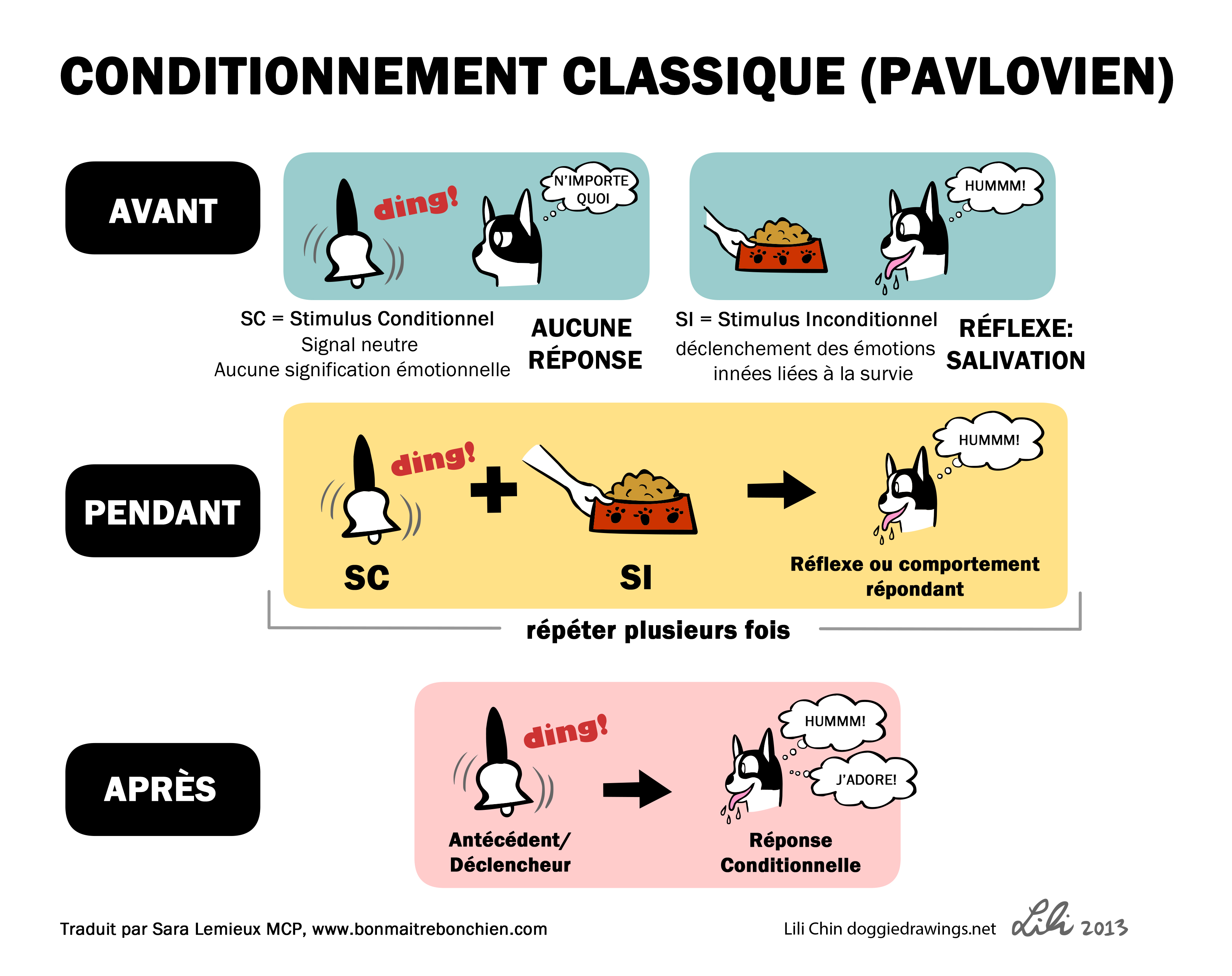 http://www.pension-77.fr/wp-content/uploads/2014/11/Image-Doggie-Drawings-conditionnement-classique.jpg