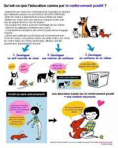 Image Doggie Drawings illustrant le renforcement positif