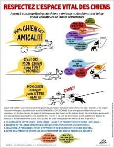 Image Doggie Drawings expliquant comment respecter l'espace vital des chiens